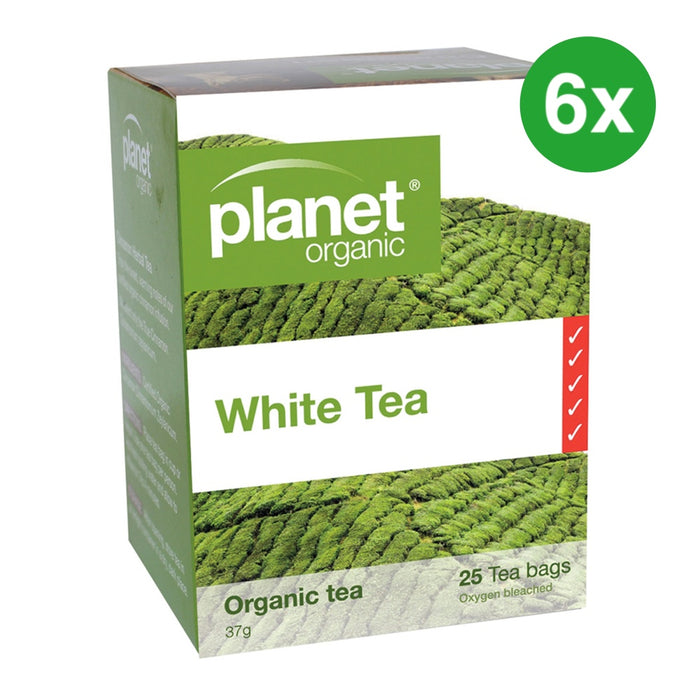 PLANET ORGANIC White Tea Herbal Tea - 25 Bags
