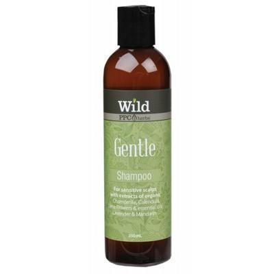 WILD Gentle Organic Shampoo - 250ml