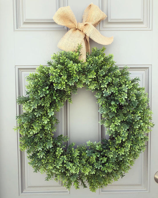Indoor or Outdoor Boxwood (2 available)