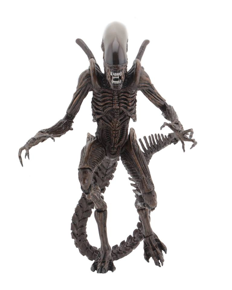 Aliens Series 14 Alien Resurrection Resurrection Warrior (pre order)