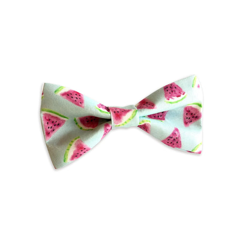Watercolor Watermelon Bow Tie