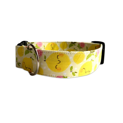 Strawberry Lemonaid Dog Collar