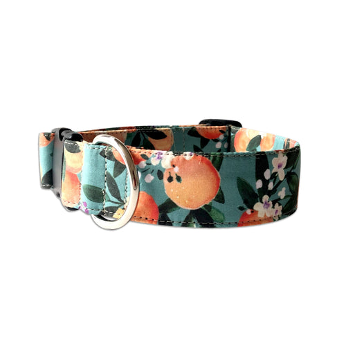 Darling Clemintine Citrus Personalized Collar