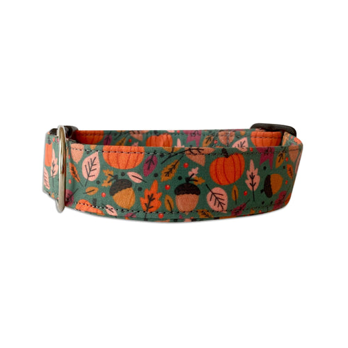 Pumpkins & Leaves Oh My! Dog Collar
