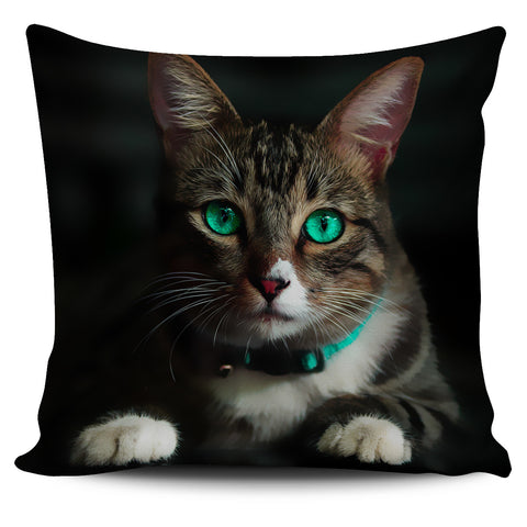Pillow Cover Emerald Eye Cat Painted