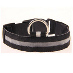 Nylon LED Safety Dog/Cat Collar