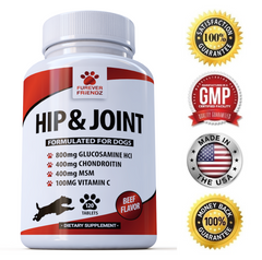 Glucosamine for Dogs - With Chondroitin, MSM & Vitamin C - Hip & Joint Pain Relief (Chewable Tablets)