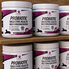 Probiotics for Dogs - Aids Good Digestive Health (Powder)