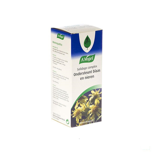 Vogel Solidago Complex Gutt 50ml - A. Vogel - InstaCosmetic