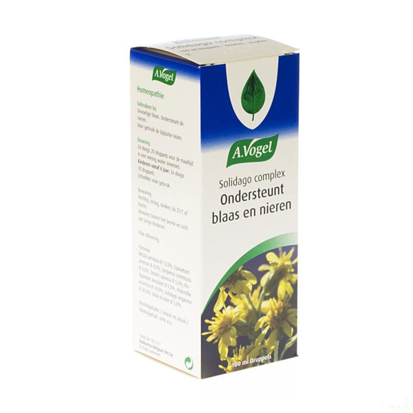 Vogel Solidago Complex Gutt 100ml - A. Vogel - InstaCosmetic
