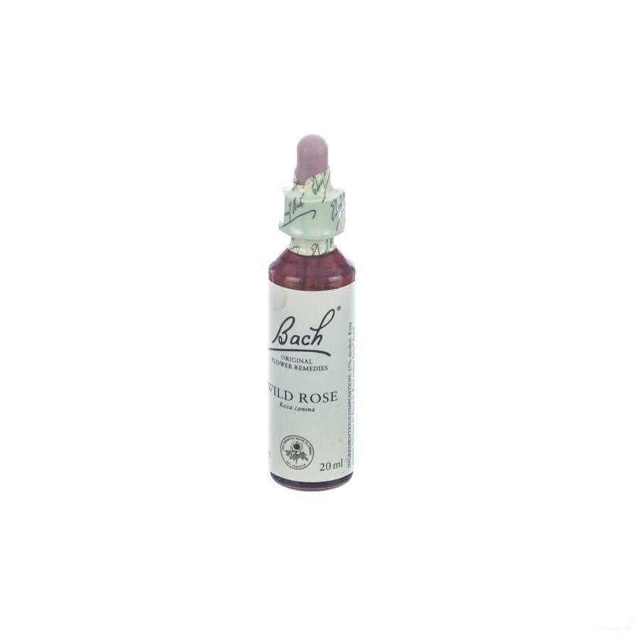 Bach Flower Remedie 37 Wild Rose 20 Ml