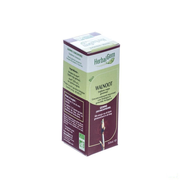 Herbalgem Walnoot Maceraat 50ml - Herbalgem - InstaCosmetic