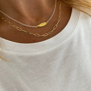 Silver and Gold Feather Necklace