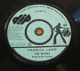 "the royals promise land 1974 uk dip  label  7"" vinyl 45  original rare reggae"