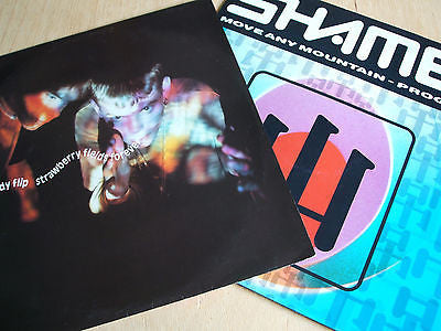 candy flip strawberry fields the shamen move any mountain 2 x 12 inch singles