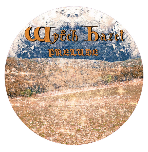 "PRELUDE (PICTURE DISC) by WYTCH HAZEL Vinyl 12"" Picture Disc  OMEN015PD"