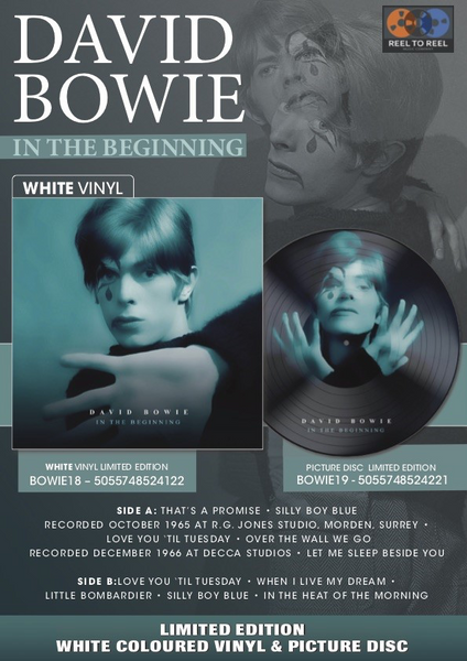 "DAVID BOWIE IN THE BEGINNING Limited Edition 12"" vinyl Picture Disc BOWIE19"