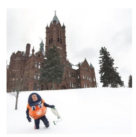 Sledding in Syracuse