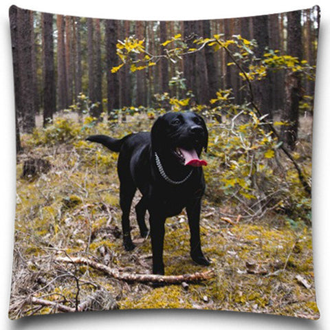 Excellent Quality Soft Cushion Covers