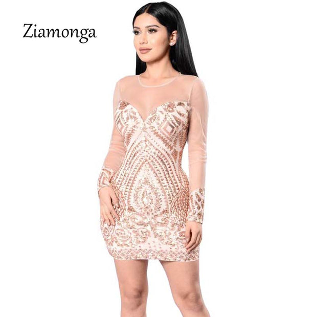 2017 Winter Sequined Dress Long Sleeve Hollow Out Bodycon Women