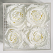 4 WHITE EVERLASTING ROSES