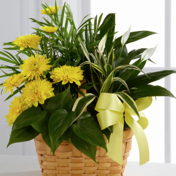 Basket Arrangement (Yellow & Green)