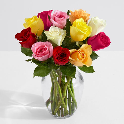 SAME DAY  DELIVERY: 12 STARBURST ROSES WITH VASE!
