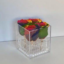 4 RAINBOW EVERLASTING ROSES
