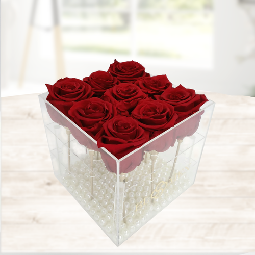 SAME DAY DELIVERY: 9 EVERLASTING RED ROSES