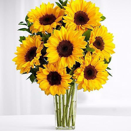 This stunning flower bouquet is ready to create a special moment for your recipient this season! Yellow sunflowers are bold and beautiful surrounded by green button poms and lush greens arranged beautifully. Toronto Online Flower Delivery Service for Luxury Roses providing free delivery in the greater Toronto area for Birthdays, Anniversary, New baby, Weddings, Mother's Day and Valentines day