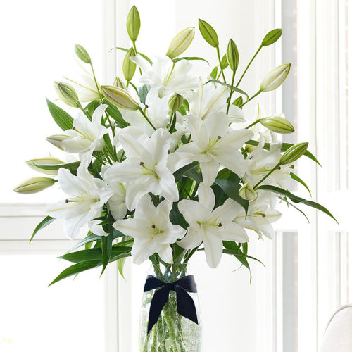 SAME DAY DELIVERY: ASIATIC LILIES WITH FREE VASE!