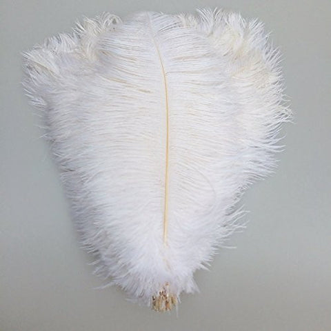 "KOLIGHT 800pcs Ostrich Feather White 12""-14"" Natural Feathers Wedding, Party ,Home ,Hairs Decoration"