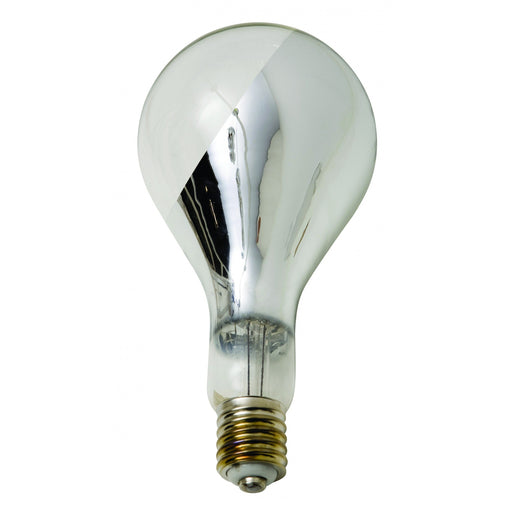 Nuevo Big Base Light Bulb