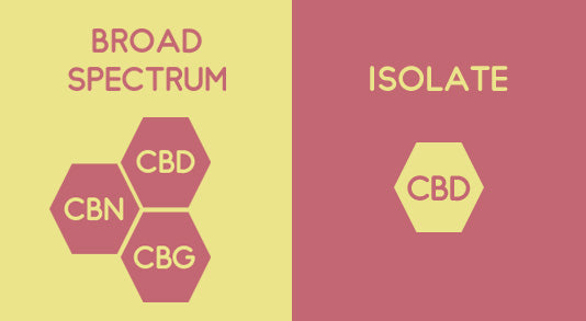 Broad Spectrum CBD Vs Isolate CBD