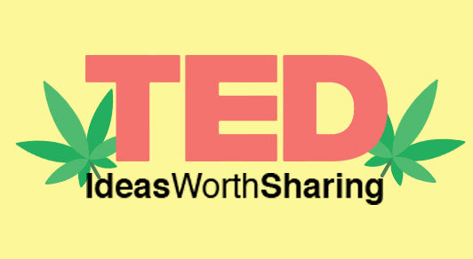 3 amazing TED Talks about Cannabis