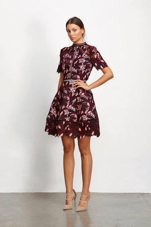 Ladies Lace Aline Dress - Elliatt - Montague Dress