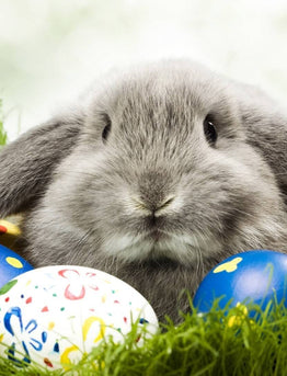 Foxburg's 4th Annual Adult Easter Egg Hunt