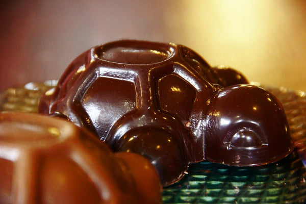 Tortoise Shell Handmade in Belgian Dark or Milk Chocolate