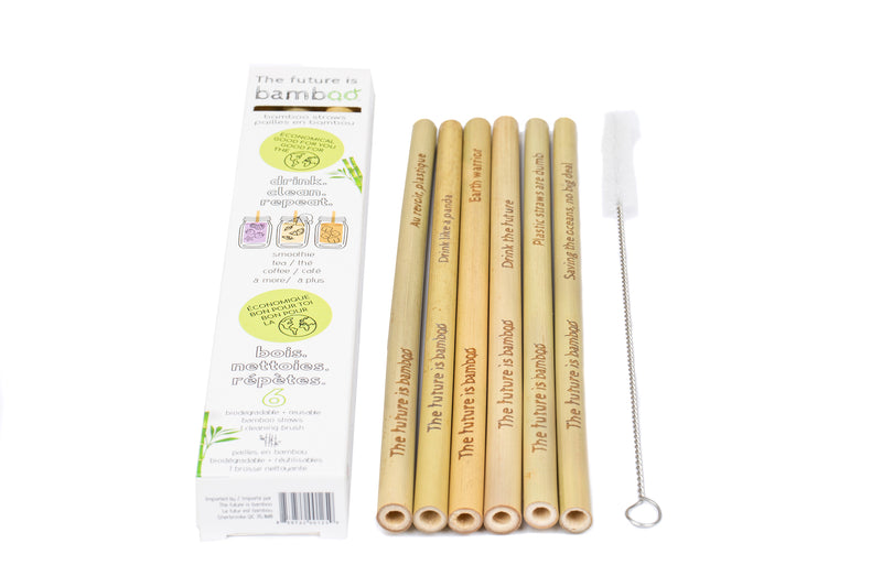 Reusable Bamboo Straws with Cleaning Brush