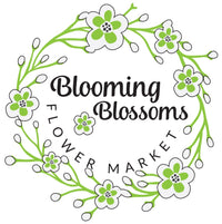 Logo-blooming-blossoms-brisbane-flower-delivery-flower-market