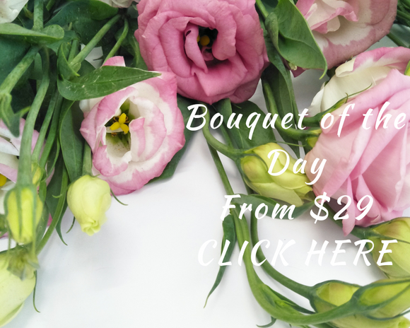 Flower-bouquet-brisbane-flower-delivery-afterpay-same-day