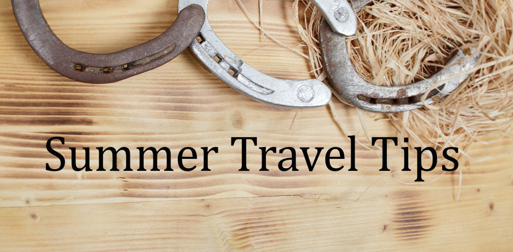 Summer Travel Tips For The Wellbeing Of Your Horse