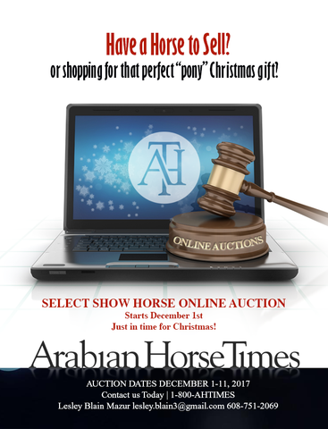 Online Order for Select Show Horse Online Auction