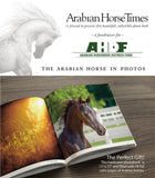 THE ARABIAN HORSE IN PHOTOS