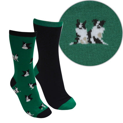 Thomas Cook Farmyard Socks- Twin Pack - Green/Black (Border Collies)