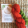 CCY-Pumpkin Hat Kit