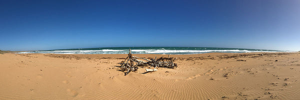 Whale Beach at Warrnambool