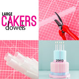 CAKERS DOWELS - LARGE OPAQUE (PACK OF 5)