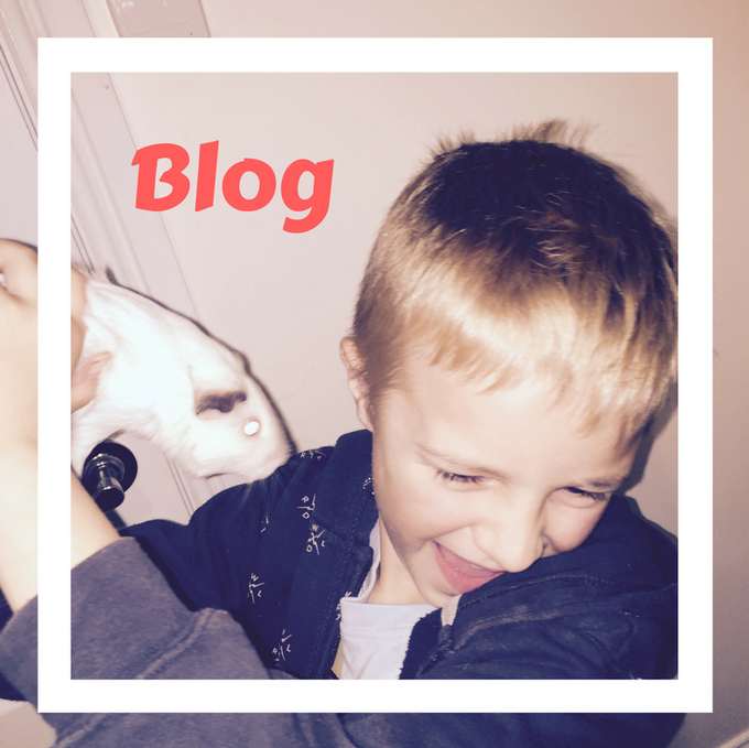 Welcome to the blog - What has the Kids Hyped!
