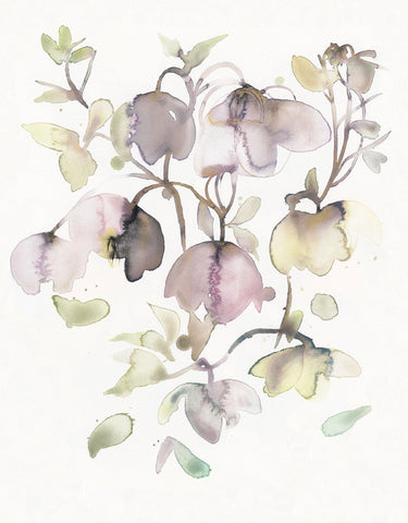 original watercolor, helleborus, feminin, watercolorart, decorative art, toril baekmark